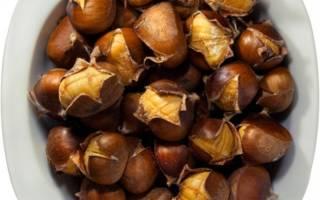 Как посадить каштаны из ореха на даче?