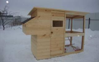 Как содержать кур зимой на даче?