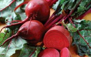 Консервация свеклы на зиму – готовим вкусные салаты!