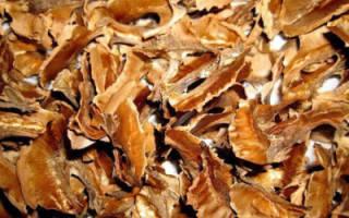 Настойка из перегородок грецкого ореха – рецепт и применение