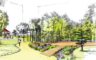 Ландшафтное озеленение – как правильно сделать проект дизайна участка