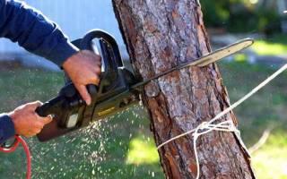 Как правильно рубить дерево?
