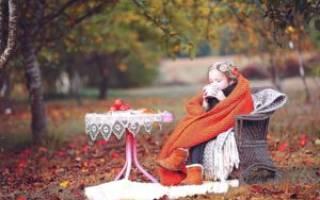 Сроки посадки яблони осенью в средней полосе