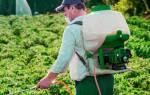 Ранцевый опрыскиватель – многообразие надежного садового инструмента