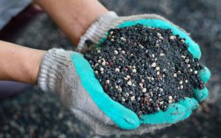 Выбираем удобрения для овощей – битва за урожай