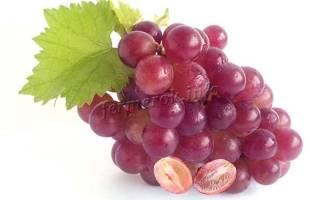 Виноград без косточек сорта для средней полосы