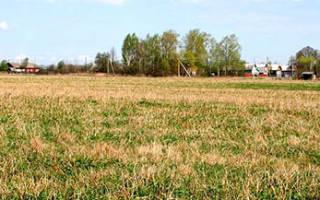 Что такое земли сельхозназначения под дачное строительство?