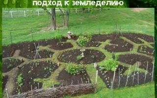 Пермакультура в России практика