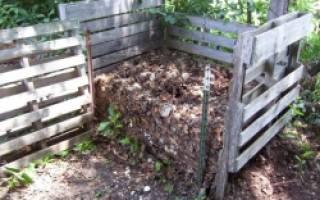 Как организовать компостную яму на даче?