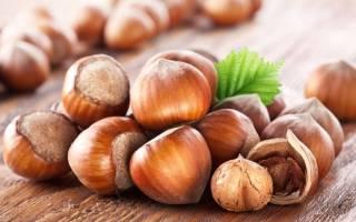 Как вырастить саженец фундука из ореха?