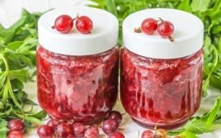 Крыжовник – рецепты необычных заготовок