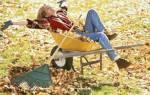 Что сделать осенью на даче?