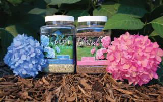 Подкормка гортензий весной – правила удобрения цветущего кустарника
