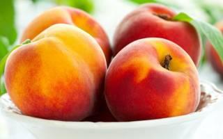 Сколько живёт персиковое дерево?
