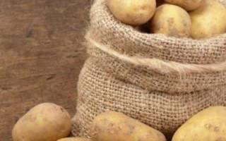 Рассыпчатые сорта картофеля для средней полосы