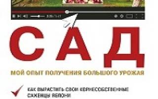 Посадка виктории осенью в Сибири