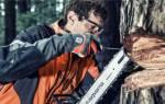 Как точить цепь бензопилы – инструкция к действию