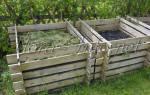 Как ускорить созревание компоста на даче?