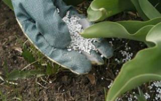 Нормы внесения минеральных удобрений – правильный расчет
