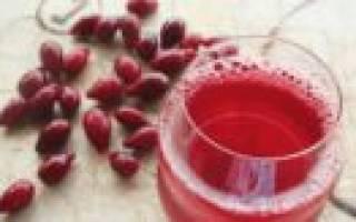 Компот на зиму из кизила – рецепт приготовления