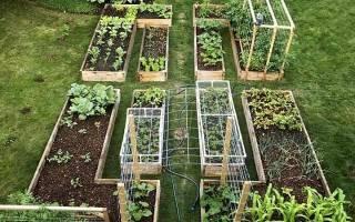 Как сделать красивый огород на даче?