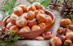 Как посадить саженец фундука?
