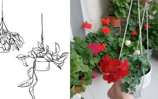 Кашпо своими руками для комнатных цветов подвесное