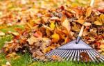 Нужно ли убирать опавшую листву на даче?