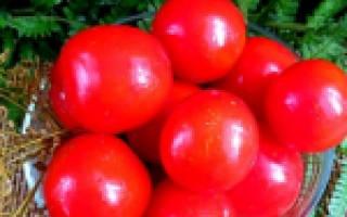 Маринованные помидоры на зиму – готовим вкусно и разнообразно