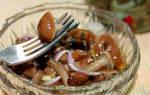 Рецепты засолки грибов на зиму: опята