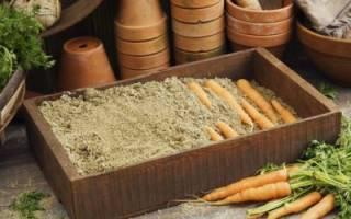 Правильное хранение моркови в опилках – от и до!
