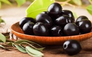 Как растет оливковое дерево?