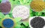 Азотно-фосфорно-калийное удобрение – как не ломать голову над подкормкой?