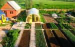 Земли сельскохозяйственного назначения для ведения дачного хозяйства