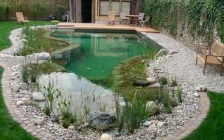 Как правильно выкопать пруд на даче?
