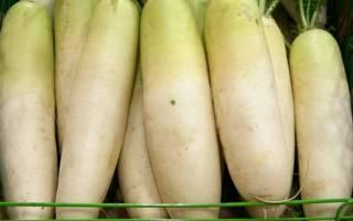 Маринованная редька – несколько способов придать корнеплоду новый вкус
