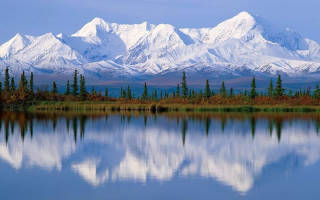 Выращивание ремонтантной малины в Сибири
